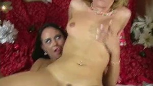 Black Strapon Fucking Sluts in front of the Christmas Tree!