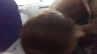 FACIAL. blowjob at train