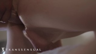 TransSensual – Beautiful Trans-Girl Crystal Thayer Spends A Passionate Night With Dante Cole